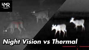 Night Vision vs. Thermal Optics – What is the Ideal Setup?